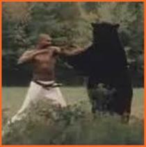 ウィリーウィリアムス 熊